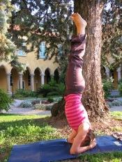 Sirshana - headstand