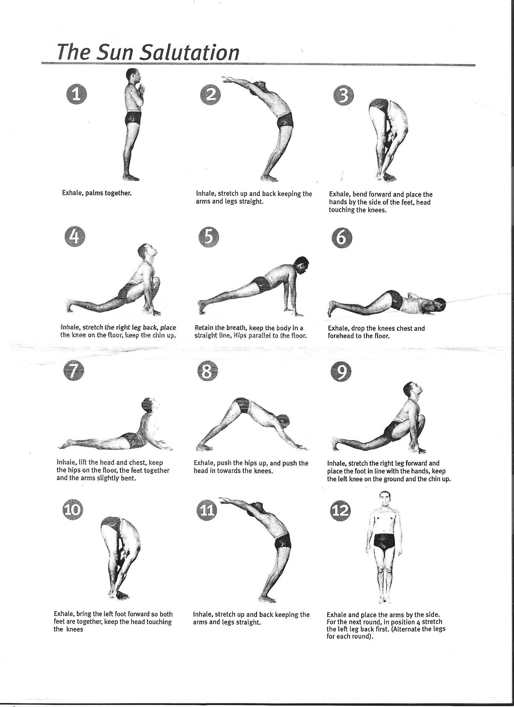 Brussels Yoga Mala 2014 108 Sun Salutations